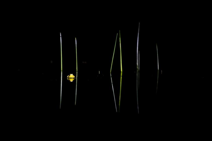 minimalisme-JLN-HD-30
